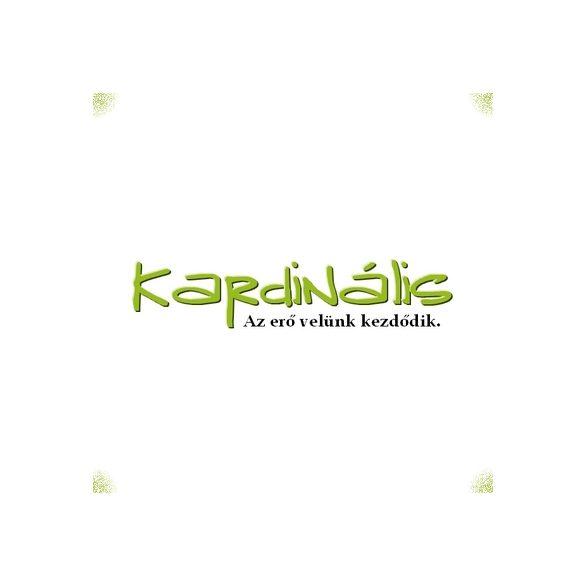 Habranthus robustus eladó