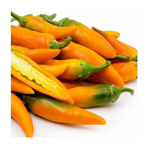 Bulgarian carrot 10 mag