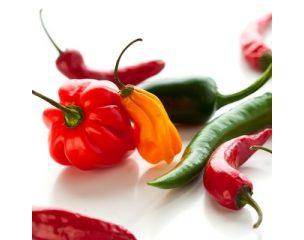 Chili és paprika magok.
